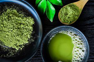 Explore the Store: Matcha Green Tea