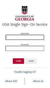 Screenshot of SSO login prompt